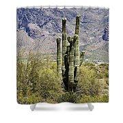 Desert Strength Shower Curtain