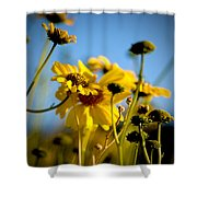 Desert Sunflower Variations Shower Curtain