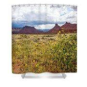 Desert Sunflowers Shower Curtain