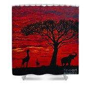 Desert Sunset 3 Shower Curtain