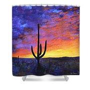 Desert Sunset 4 Shower Curtain