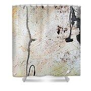 Desert Surroundings 2 By Madart Shower Curtain