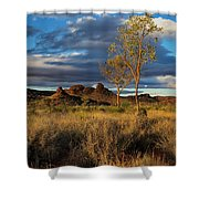 Desert Track Shower Curtain