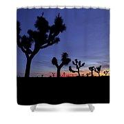 Desert Trip II Shower Curtain