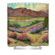 Desert Verbena At Borrego Springs Shower Curtain