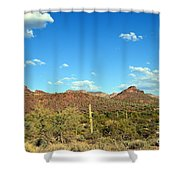 Desert View 340 Shower Curtain