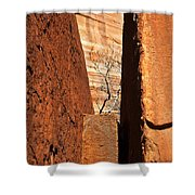 Desert Vise Shower Curtain