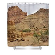 Desert Wash Shower Curtain