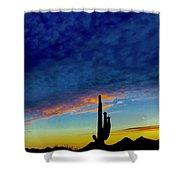 Desert Wave Shower Curtain