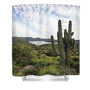 Desert Wildflower View Shower Curtain