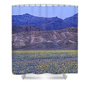 Desert Wildflowers, Death Valley Shower Curtain