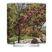 Desert Willow Tree Shower Curtain
