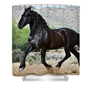 Desert Wind Shower Curtain