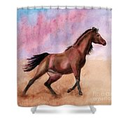 Desert Wind Shower Curtain