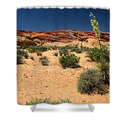 Desert Yucca In Bloom Valley Of Fire Shower Curtain