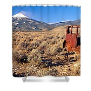 Deserted Car With Cow Skeleton, Great Shower Curtain