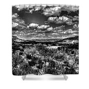 Desertscape Shower Curtain