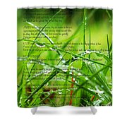 Desiderata 4 Shower Curtain