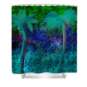 Design #13 Shower Curtain