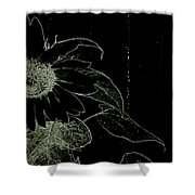 Designs Of Nature Shower Curtain