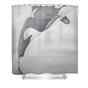 Desintigrating Orca Shower Curtain