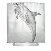 Desintigrating Porpoise Shower Curtain