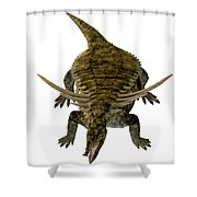 Desmatosuchus On White Shower Curtain