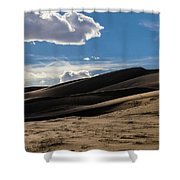 Desolate Shower Curtain