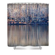 Desolate Splendor Shower Curtain