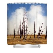 Desolation Shower Curtain