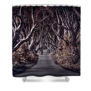 Destined To Wander Shower Curtain