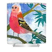 Detail Of Bird People The Chaffinch Family Father Shower Curtain