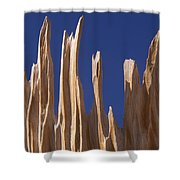 Detail Of Bristlecone Pine Shower Curtain