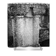 Detail Of Capital Of Cloister At Cong Abbey Cong Ireland Shower Curtain
