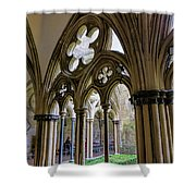 Detail Of Salisbury Cathedral Cloister  Shower Curtain
