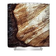Detail Of Sawing Wood With Bark Shower Curtain