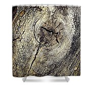 Detail Stumps On Old Wood Shower Curtain