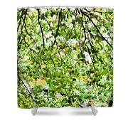 Detailed Tree Branches 4 Shower Curtain