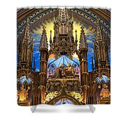 Details Notre Dame Montreal Shower Curtain