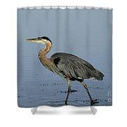 Determination - Great Blue Heron Shower Curtain