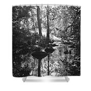 Devil Water In Sunlight Shower Curtain