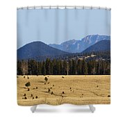 Devil's Head Fire Tower In The Pike National Forest Shower Curtain