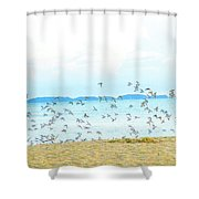 Devil's Island  Shower Curtain