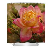 Devoted To You Shower Curtain