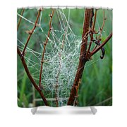 Dew Covered Spider Web Shower Curtain