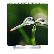 Dew Drop On Spring Grass Shower Curtain