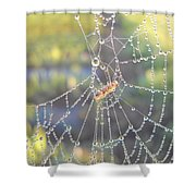 Dew Drops On A Spider Web Shower Curtain