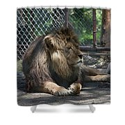Dew Haven 2 Shower Curtain