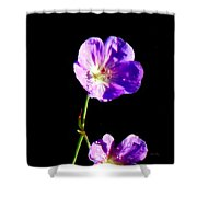 Dew Kissed Morning Shower Curtain