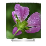 Dew Kisses Shower Curtain